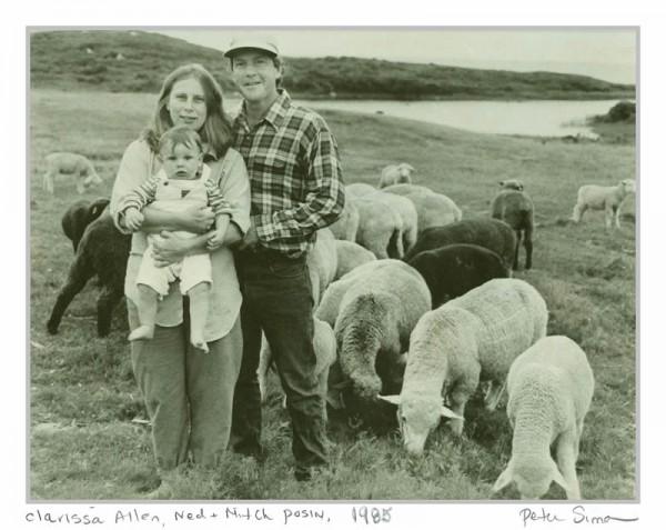 Clarissa Ned andMitch1985